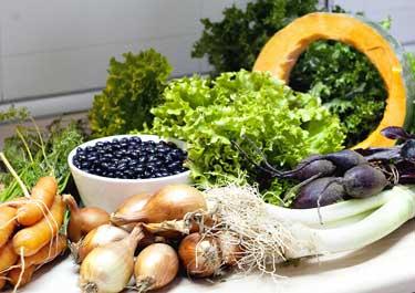 Cesta llena de hortalizas